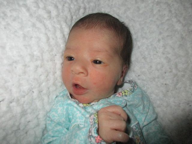 birth Brock
