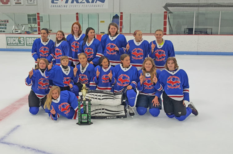 Courtesy photo Members of the Junior Fighting Yoopers girls Under-12 AAA travel hockey team are, in front: Anna Byczek of Marquette. Middle row from left: Hailey Krznarich of Ironwood, Jorja Mikkola of Negaunee, Donna Lotzer of Ironwood, Maria Gironella of Minocqua, Wis., Abby Pieper of Marquette, Kasia Olszewski of Ontonagon and Kaitlyn Williams of Ishpeming. Top row from left: Aziza Burgoon of Iron Mountain, Emily Wroblewski of Lake Linden, Dru Sabatke of Merrill, Wis., Chloe Allen of Escanaba, Lyndsey Lake of Marquette, Kassidee Linssen of Lakewood, Wis., and  Emma Perala of Calumet.