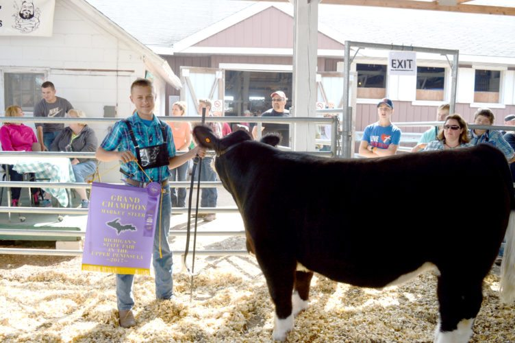 "Haley Gustafson | Daily Press  Jace Moker stands with his grand champion steer ""King"" after being given the title at the beef cattle junior show Tuesday at the Upper Peninsula State Fair in Escanaba."