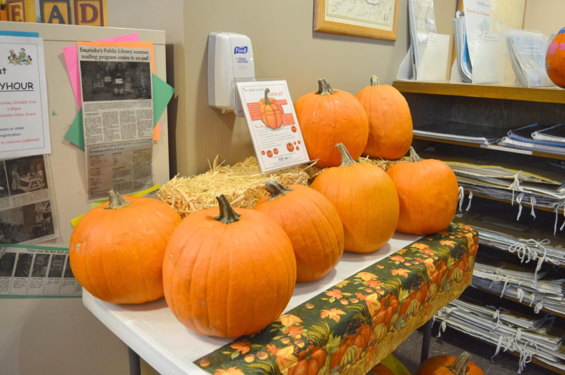 Haley Gustafson | Daily Press  Pumpkins available for check-out at the Escanaba Public Library are shown Tuesday afternoon.