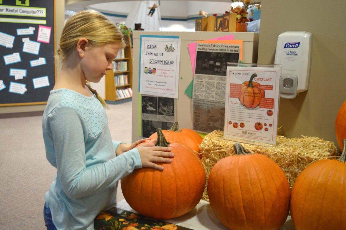 "Haley Gustafson | Daily Press  Bayli Short checks out a pumpkin at the Escanaba Public Library in Escanaba Tuesday afternoon. The pumpkins, which are available to ""check-out"" until Saturday, are part of the library's Great Pumpkin Check-Out pumpkin decorating contest."