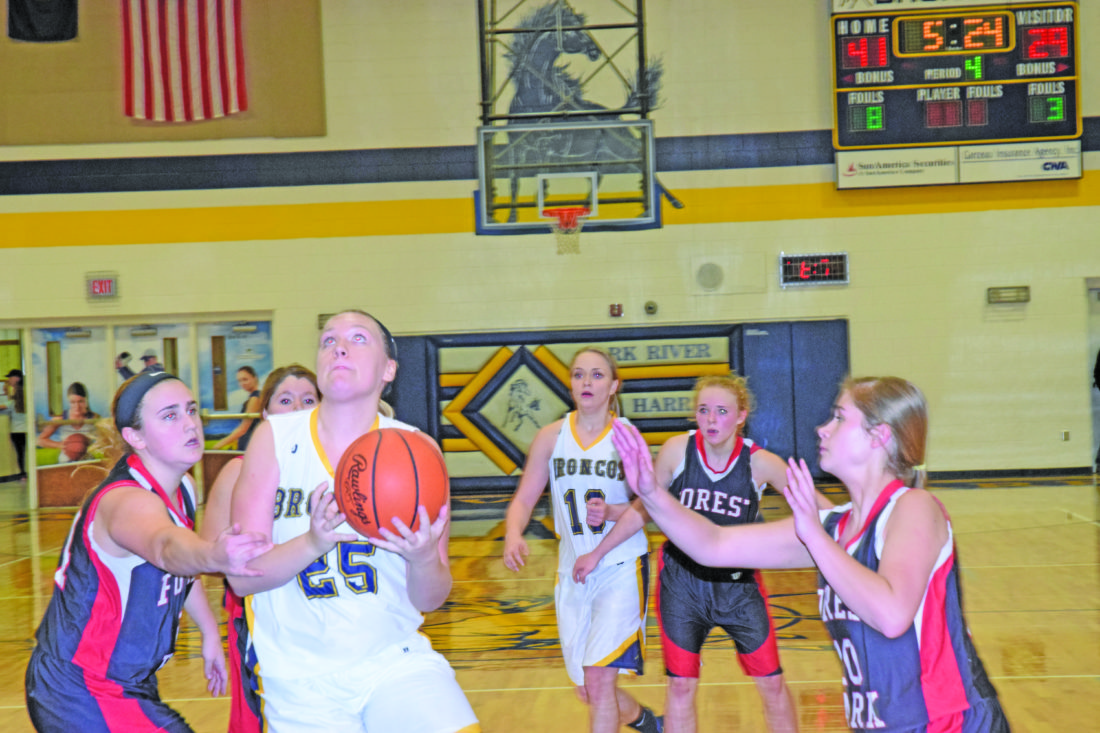 Mike Mattson | Daily Press Bark River-Harris' Megan Robinette goes up strong for a shot as Forest Park's Claudia Nocerini defends.