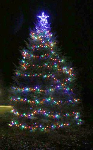 Courtesy photo The Gladstone-Rapid River Kiwanis Club Christmas tree sits lit near the Gladstone Beach House.