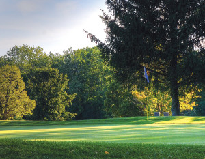 Foster Park Golf Course, photography by Fred Van Fossen