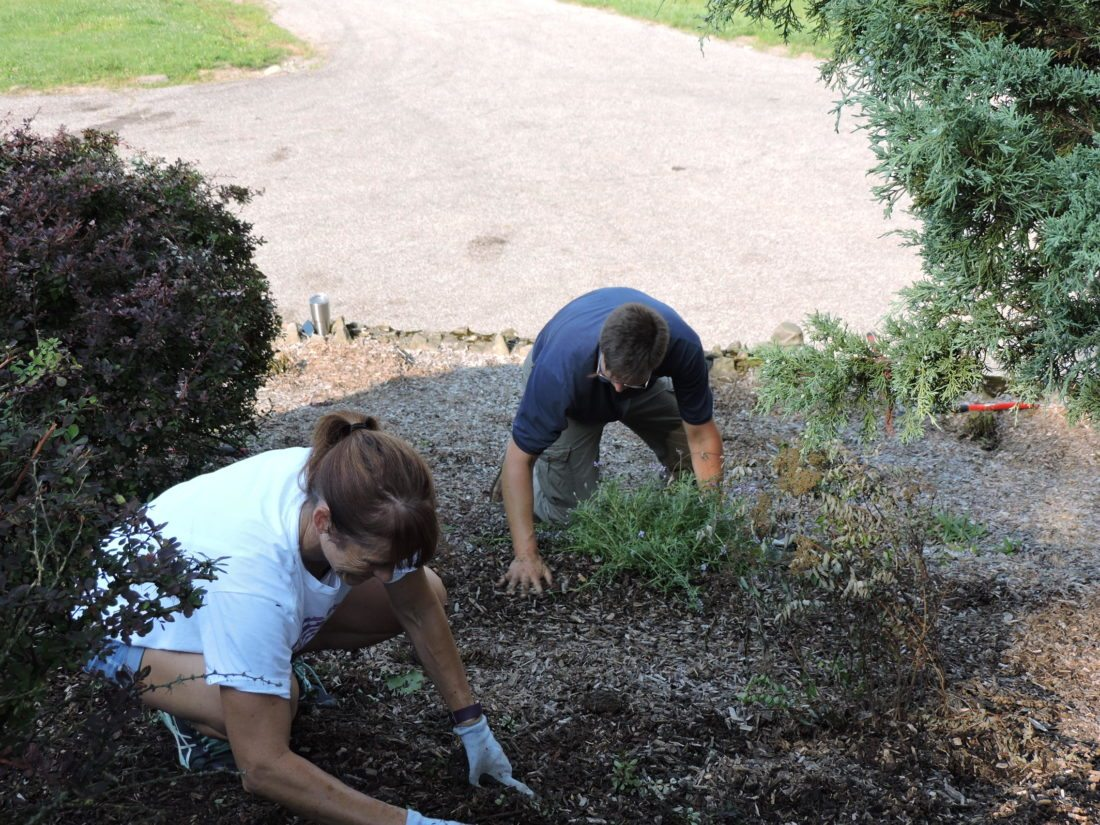 WORKING AT THE PARK — Nancy Oliver, left, and Dave Schmeising of Franciscan University of Steubenville work in the flower bed in front of the Belleview Clubhouse. The university officially adopted the Belleview Park Wednesday and will send volunteers once a month to do park maintenance work. -- Dave Gossett