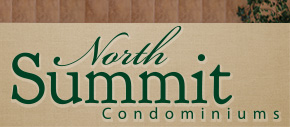 North Summit Logo