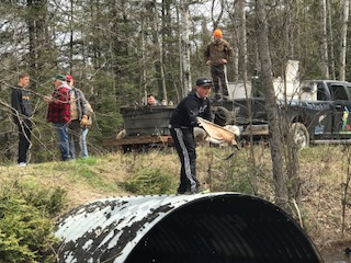 This spring marked the 36th consecutive year the Normenco Sportsman Club has planted fish in northern Menominee County.