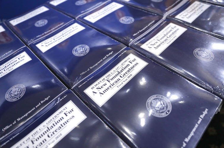 COPIES OF PRESIDENT Donald Trump's fiscal 2018 federal budget are laid out ready for distribution Tuesday on Capitol Hill in Washington. (AP Photo/Pablo Martinez Monsivais)