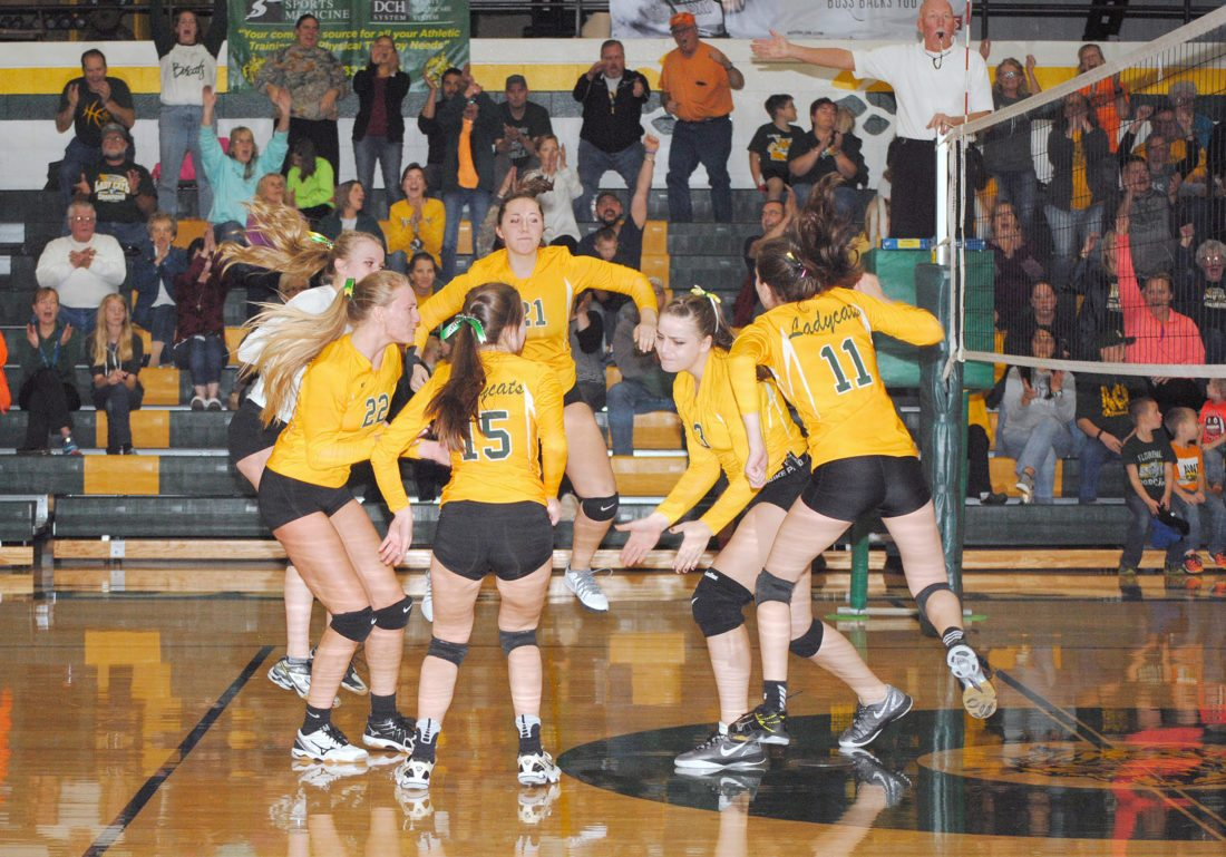 Florence celebrates Thursday after beating Bowler in four sets and advancing to the regional finals. (Burt Angeli/The Daily News)