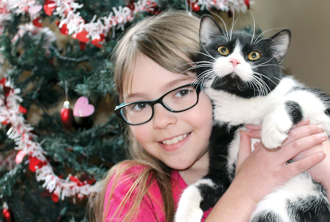 "DANIELLE CONERY, 8, of Iron Mountain cuddles with Aiden, a 9-month-old male ""tuxedo cat"" available for adoption, in front of the Valentine's Day tree at the The Almost Home Animal Shelter. The shelter has its ValenTAILS fundraising event Saturday at Oak Crest Golf Course. (Theresa Proudfit/Daily News photo)"