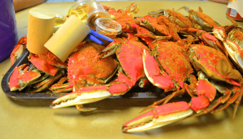 A plate of Maryland crabs is ready for picking. (Journal photos by Jeanne Mozier)
