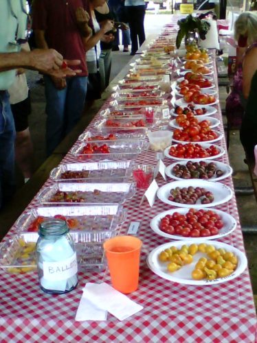 The Tomato tasting table is loaded with home grown heirloom varieties at BJEMGA's Tomato Fest last year.