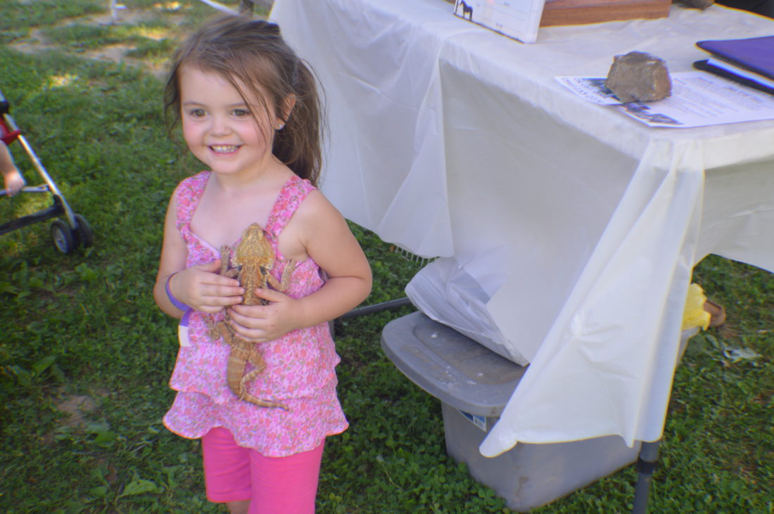 Kaleiha Pearson, 3, holds a bearded dragon while enjoying the June Jubilee festival with her family on Sunday at War Memorial Park in Martinsburg.
