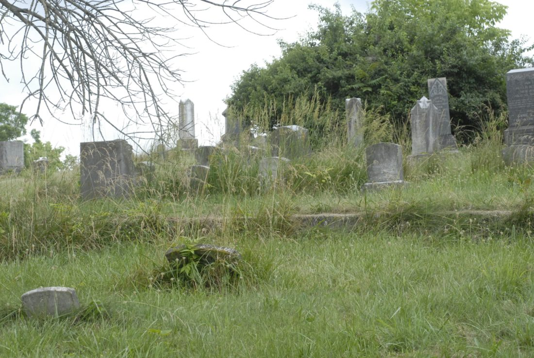 The back half of the Green Hill Cemetery, filled with high grass and weeds.