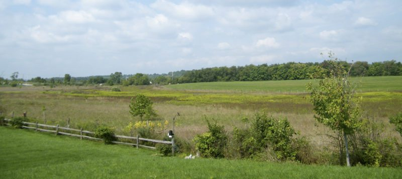 View of the battlefield of the Second Battle of Kernstown, Virginia. (Photo by Sarah Stierch)