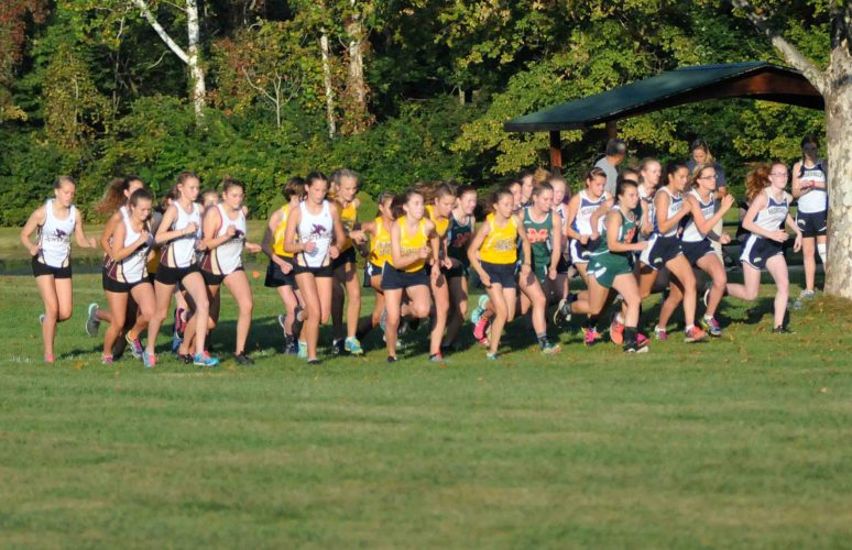 Girls from four teams take off at the start of a cross county meet held on Wednesday at Poor House Farm Park. Berkeley Springs won the meet. (Journal photo by Ron Agnir)
