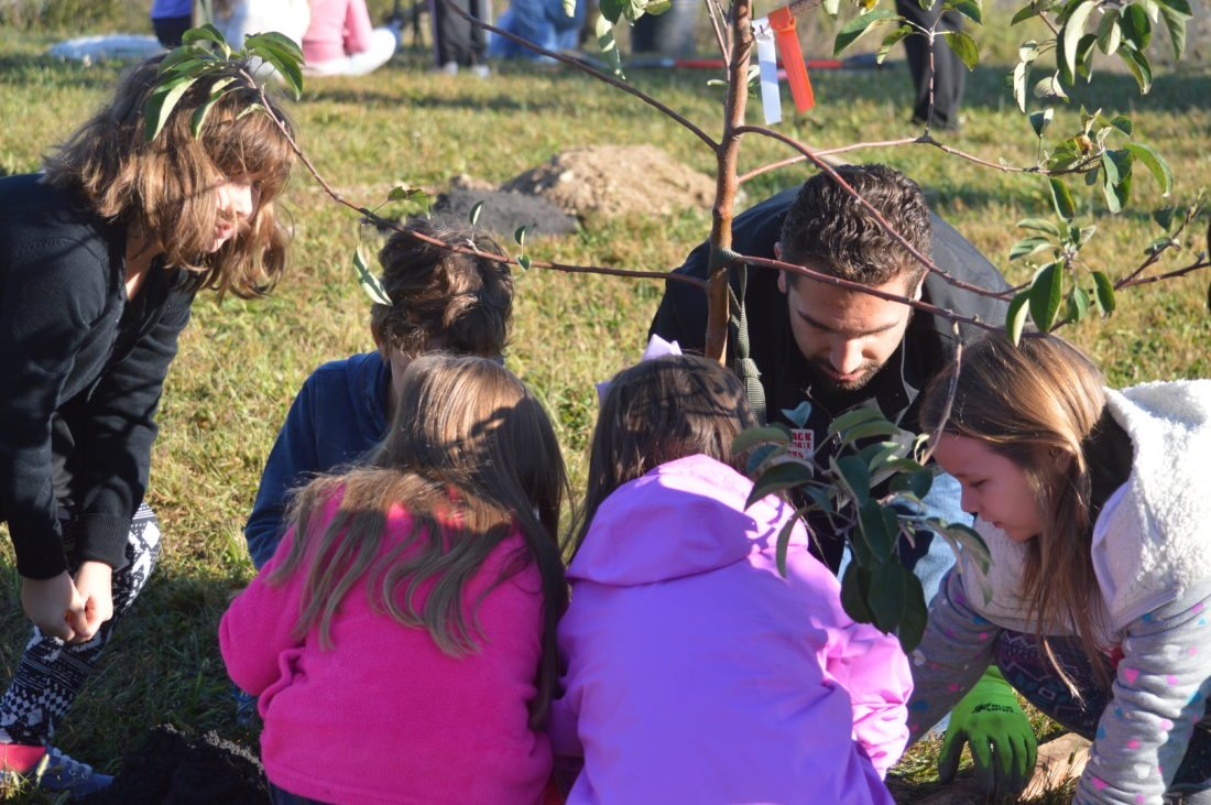 Students plant trees at Potomack Intermediate School.