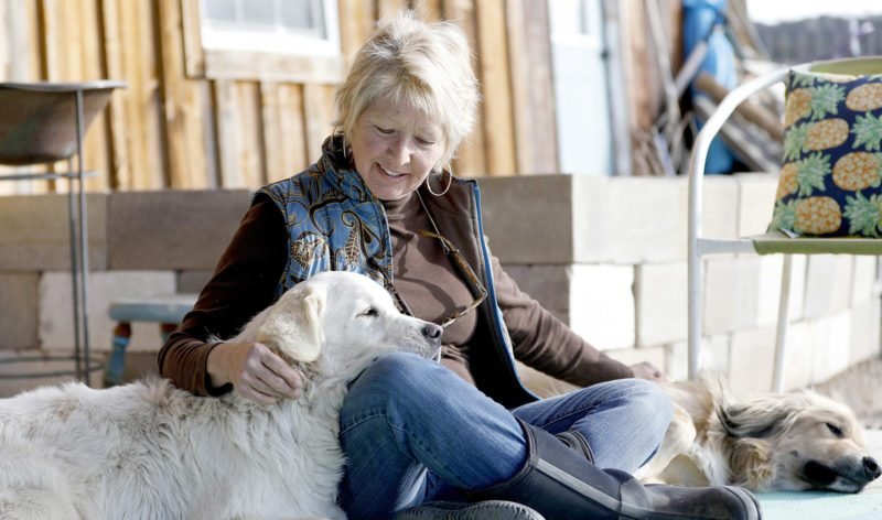 ADVANCE FOR USE SATURDAY, DEC. 16 - In this Nov. 29, 2017 photo, Debbie Faulkner shares a moment with her dogs that she has rescued at her ranch in Crawford, Colo. Faulkner is the owner of the Black Canyon Animal Sanctuary and founder of the Silver Whiskers program where senior pets are paired with senior citizens. (Chancey Bush/The Grand Junction Daily Sentinel via AP)