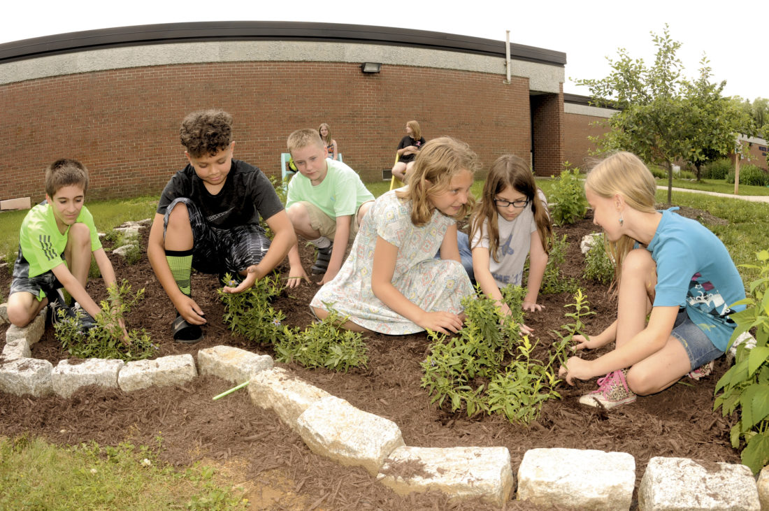 Making a waystation: 4th graders at North Jefferson continue Monarch ...