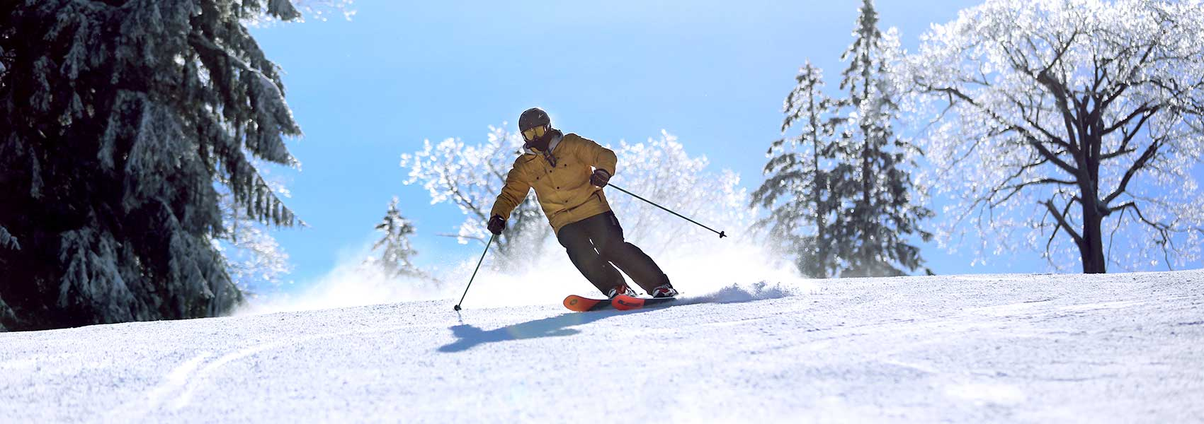 Skier on Upper Wildcat