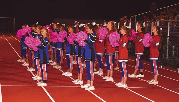 The Broadalbin-Perth Cheerleaders used pink pom-poms during the Patriots foortball game against Hudson Falls on Oct. 6. (The Leader-Herald/James A. Ellis)
