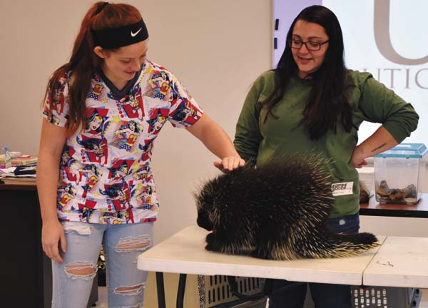 Fontana LaCoppola, an Oppenheim-Ephratah-St. Johnsville student enrolled in the HFM Career and Technical Center's new veterinary and animal science program, pets a North American porcupine during a presentation by the Utica Zoo educator Nicolette Hajdasz, at right. (Photo submitted)