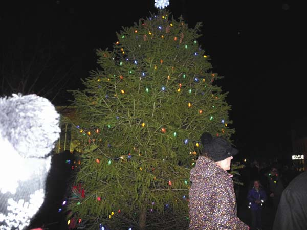 The downtown Christmas tree is lit at the Johnstown Colonial Stroll Friday night in the city. (The Leader-Herald/Michael Anich)