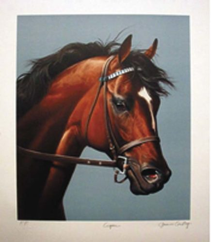 Pictured is a photo of the rare Jenness Cortez    painting of the 1996 Horse of the Year, Cigar, that was stolen in an Edinburg burglary.  Police are asking for the public's help to recover the print. (Photo submitted)