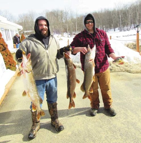 Matt Wood of Amsterdam,  left, with the help of Kevin Ward of Broadalbin, brings in his three pike and a perch to be measured Saturday morning at the annual fishing contest sponsored by the Great Sacandaga Lake Fisheries Federation. The pike measured 36 5/8, 36 3/4 and 36 3/4 inches and the perch, 14 3/4. (The Leader-Herald/Eric Retzlaff)