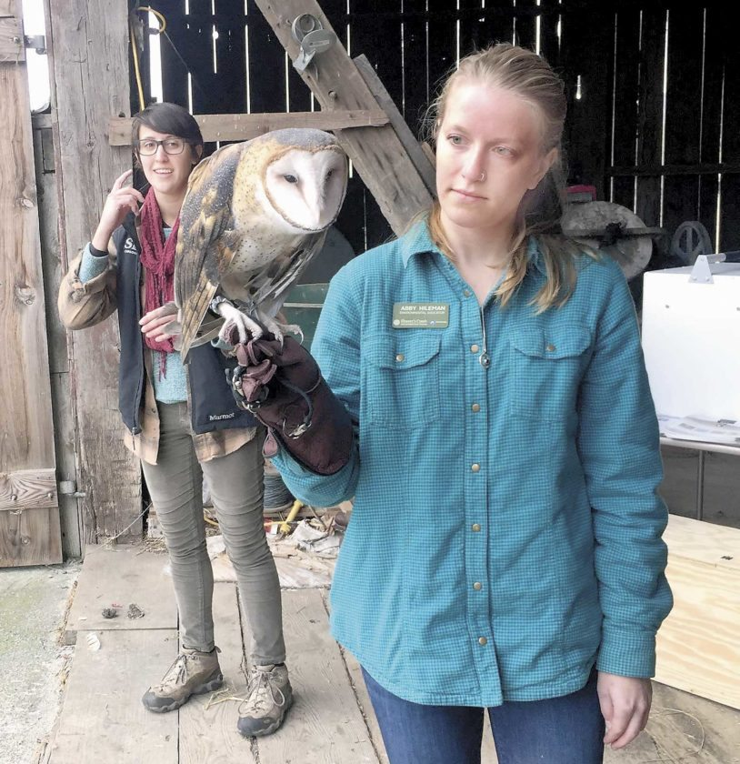 Sentinel photo by KATHRYN DIVIRGILIUS Abby Hileman, environmental education intern at Shaver's Creek, holds a barn owl for the crowd while Torri Withrow, raptor center intern at Shaver's Creek, explains its importance on Tuesday, at Bella Vista Farm.