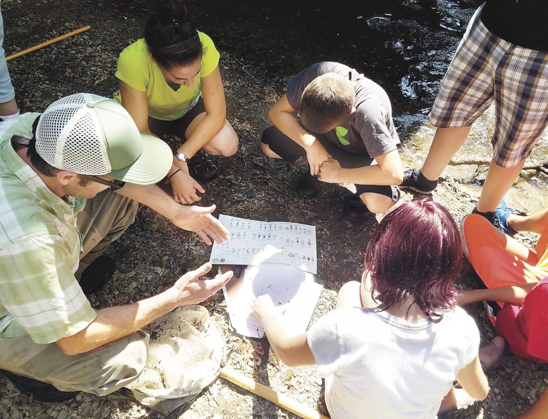 Photo submitted by LAUREN BARLOW Children do a stream study while attending the Young Scientists Camp in 2016. This year' s camp is Aug. 7-11.