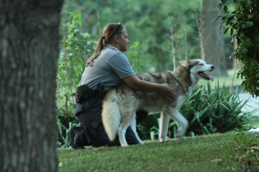 Animal control officers are advocates for pets News Sports Jobs