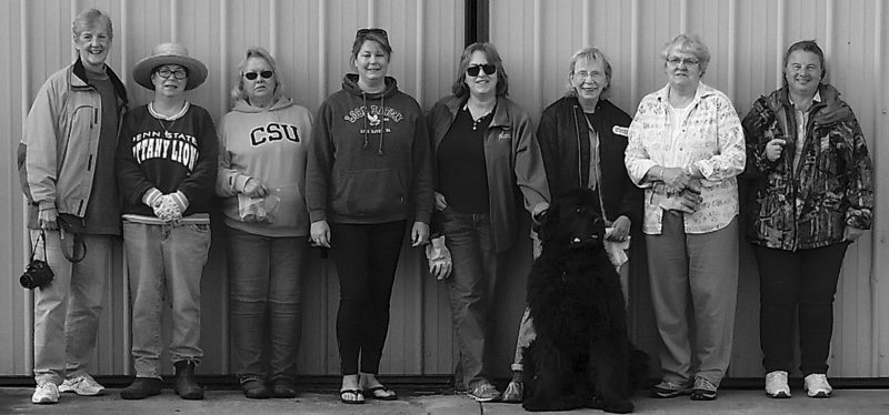 PHOTO PROVIDED From left are Master Gardeners Karen Elias, Candy Gore, Deb Liguori, Ginny Counsil, Mary Ann Clark, Lynda Cridge, Carole Livingston and Deb Burrows at the Clinton County Fairgrounds where they are creating a new demonstration garden.