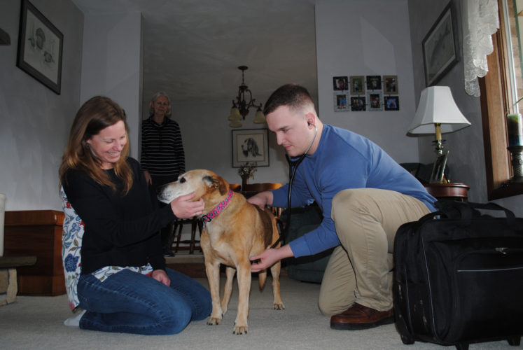 WENDY STIVER/THE EXPRESS Charlotte, a boxer mix, gets vet care in her Marsh Creek home from Dr. Andy VanGorder of Happy Paws Mobile Veterinary Clinic. With him is Gina Gramling, the practice's manager. In the background is one of Charlotte's owners, Vicki Confer.