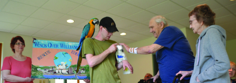 WENDY STIVER/THE EXPRESS Ken and Laurie Nihart meet Nigel, an umbrella cockatoo. Nigel, his bird buddy Archie, a blue and gold macaw, and his owner Joshua Rouland visited Heartland Personal Care Home in Woolrich recently with other members of Wings Over Williamsport Pet Bird Society and Rescue. Holding the organization's sign are Sherry Gunsallus of McElhattan and Zach Campbell of Williamsport.
