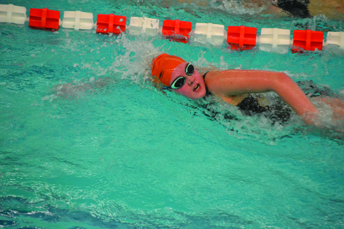 H. Lucas of Jersey Shore High School swims during a high school swimming meet against Bellefonte and Towanda. (Photo Provided)