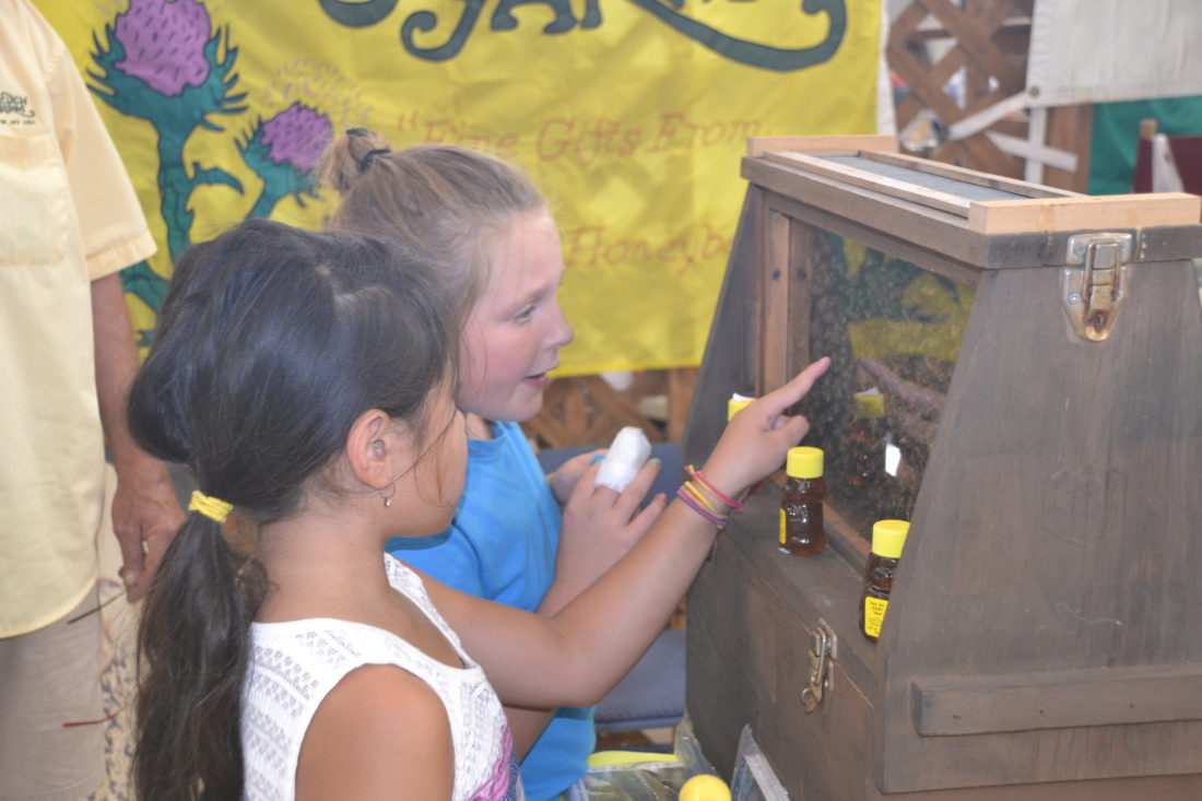 BRETT DUNLAP  Special to the Times Morgan Stewart, of Parkersburg, and Natalie Lauer, of Rockport, look at a honeycomb display with live bees Sunday during the 37th annual West Virginia State Honey Festival at City Park.