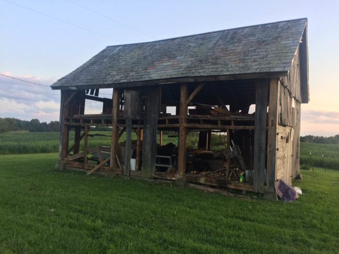 Photo submitted by Julie Duncan The Neely/Hughes Family barn lies stripped bare of wooden siding after thieves removed the wood before Labor Day.