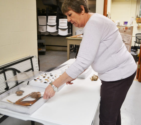 ERIN O'NEILL  The Marietta Times Glenna Hoff, education and program director for Campus Martius, arranges some examples of artifacts on Monday. The artifacts will be part of a hands-on exhibit for Digging the Past Archaeology Day.