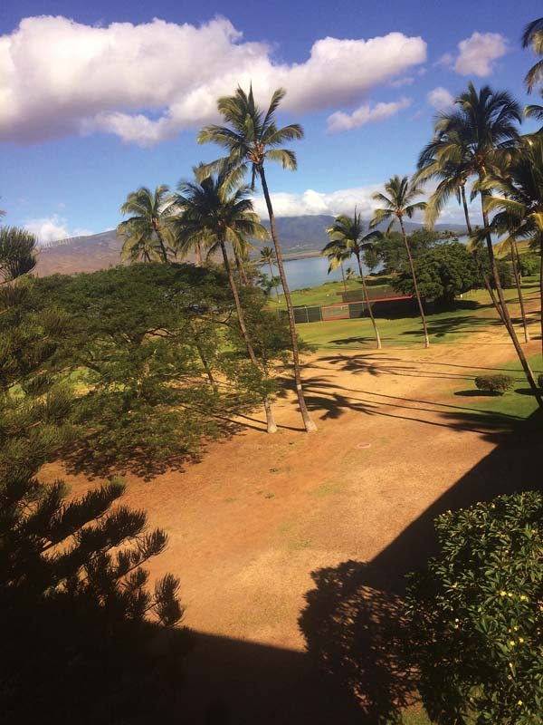 The northern portion of Waipuilani Park is currently maintained by the county. Maui Sunset residents say that the area the county cares for contains dirt patches and is in stark contrast to how the condominium cares for the portion of the park fronting their property.