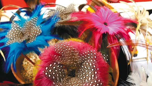Those interested learning more about Hawaiian feather work can attend a free demonstration or choose from several workshops at the Hui No'eau Visual Arts Center in Makawao.  Photo courtesy Hui