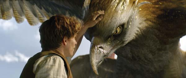 """Eddie Redmayne stars in """"Fantastic Beasts and Where to Find Them."""" Warner Bros. photo via AP"""