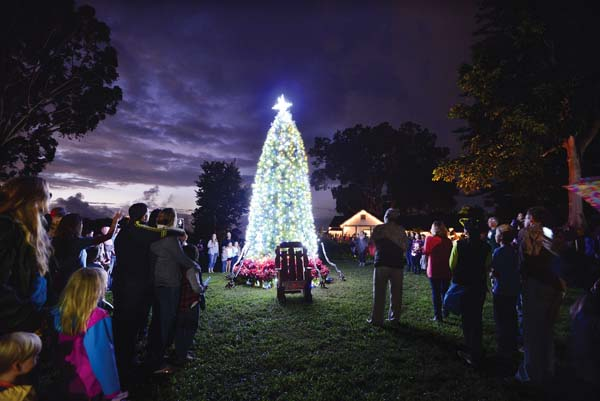 Holiday tree lighting at MauiWine at Ulupalakua Ranch; photo provided by Christina Yumul
