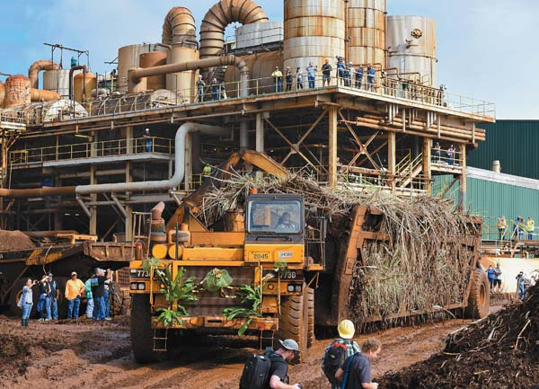Hawaiian Commercial & Sugar Co. driver Fermin Domingo guides Maui's last load of harvested sugar cane to the Puunene Mill's unloading station Dec. 12 as employees, retirees, media and others capture the historic moment with their cameras.  The Maui News / MATTHEW THAYER photo