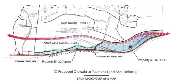 The 38 acres of open space provide a buffer between the the Makila Ranches project and Honapiilani Highway. The 38 acres were part of a larger, 186-acre parcel the county had hoped to buy but did not.