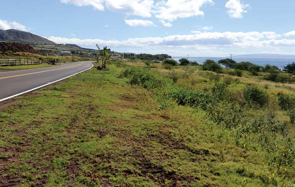 The agricultural lot, part of the Makila Ranches project in Launiupoko, is already considered a greenway. Residential dwellings cannot be built there. Farms, fruit stands and farm-related structures are among the allowed uses. The Maui News / MATTHEW THAYER photo