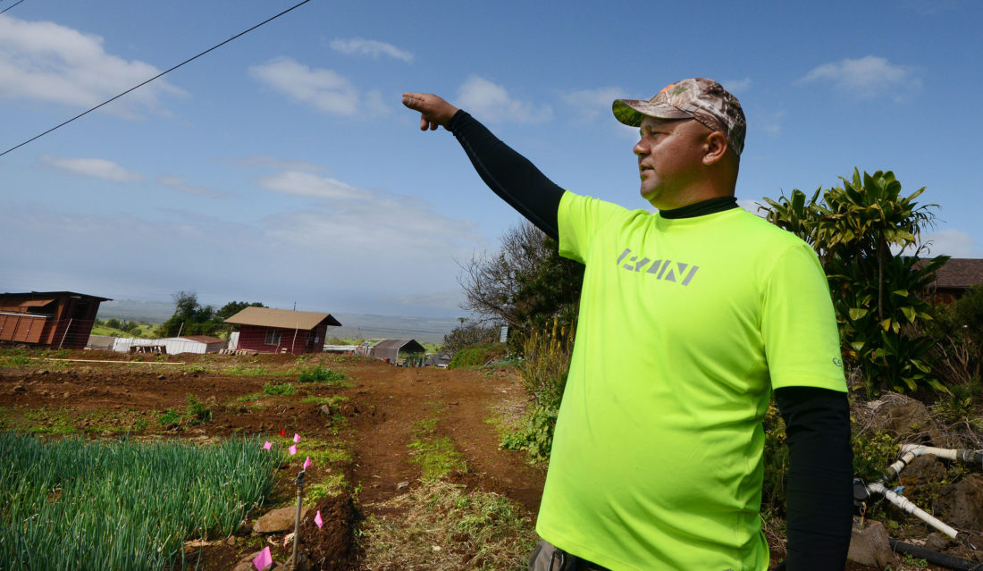 Kula's Tommy Watanabe describes some of the challenges farmers face in planting, raising and bringing crops to market at a competitive price Wednesday. Watanabe is operations manager of Watanabe Vegetable Processing LLC. Although there's strong demand for fresh local produce, island farmers face strong off-island competition, new regulations and high costs. One Maui buyer gets 80 percent from his company's produce from out-of-state growers and 20 percent from local farmers. • The Maui News / MATTHEW THAYER photo