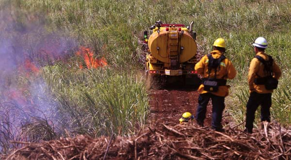 More than 150 firefighters are taking part in the weeklong exercise to prepare for the upcoming fire season that begins in May and goes through September. The Maui News / CHRIS SUGIDONO photo