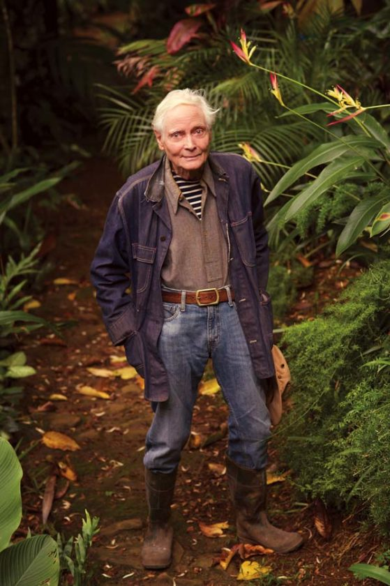 Poet W.S. Merwin turned an 18-acre abandoned pineapple field into a palm forest with more than 2,000 plants. He has said that he tried to grow native plants on the land but those efforts failed. Palms were able to thrive on the land. -- LARRY CAMERON photo