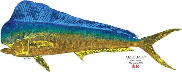 "Gyotaku fish printing, a Japanese art form, has grown in popularity in Hawaii. ""Mahi Mahi,"" created by Brian Heustis of Maui Fish Printing. -- Maui Ocean Center photo"